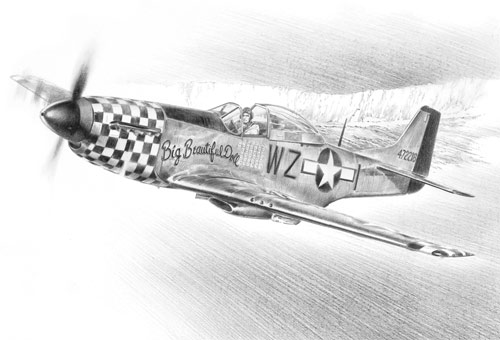 Mustang over the White Cliffs - Pencil Sketch print